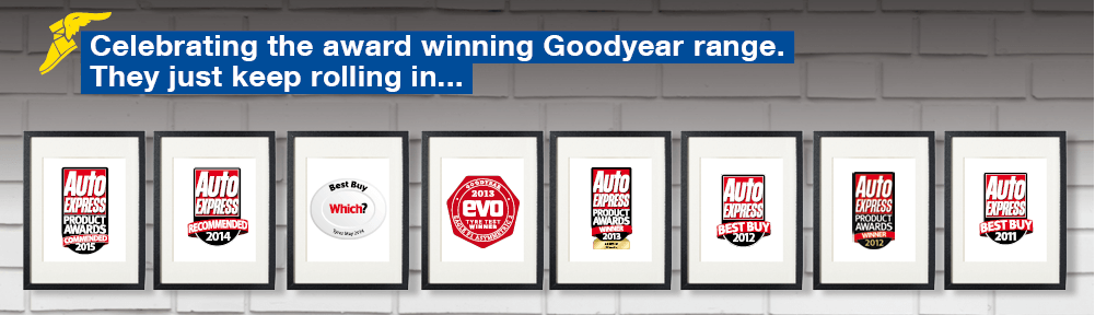 Goodyear Awards